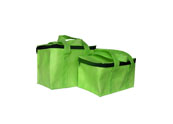 Non woven 12 pack cooler bag CLB098201